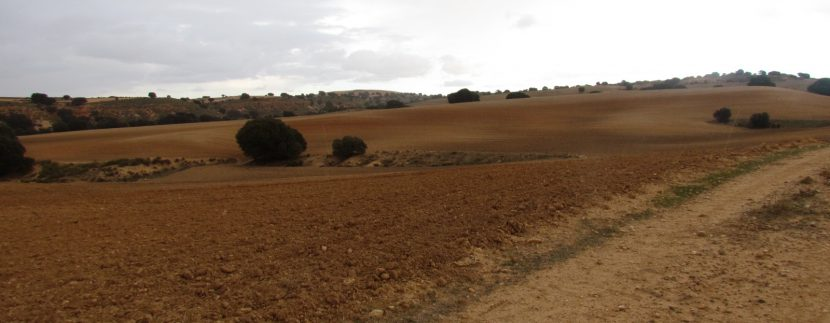 Finca La Cañada 012